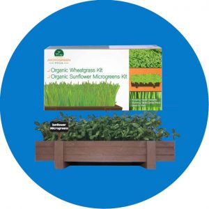 Recommended Microgreens Kit