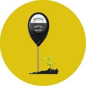 Recommended Indoor Garden Moisture Meter