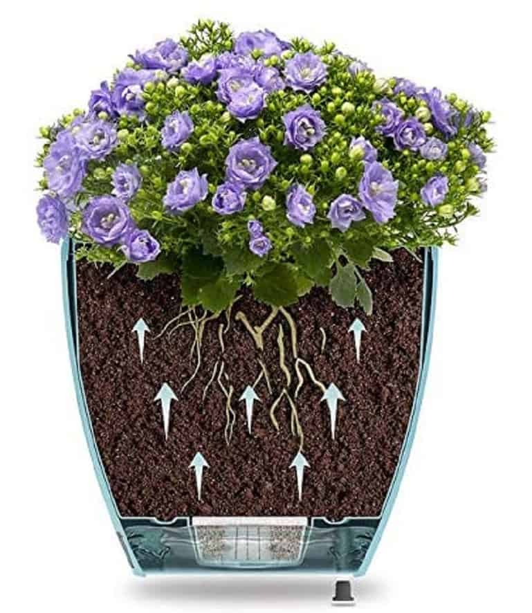 Self watering container idea