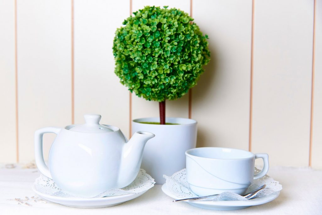 Create an Indoor Topiary