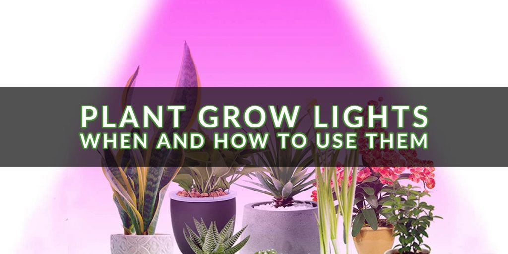 Plant Grow Lights_ When And How To Use Them