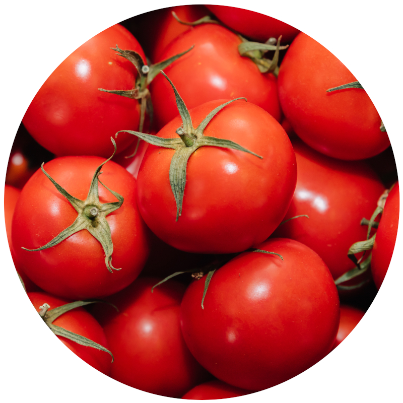 Tomatoes Poisonous for Dogs