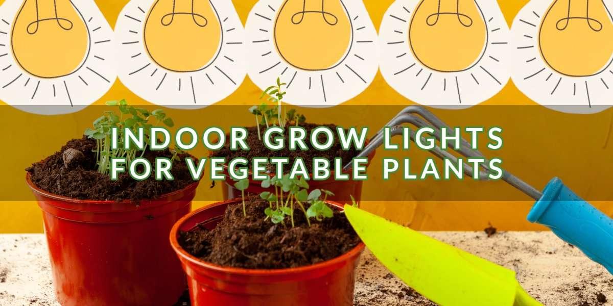 Indoor Grow Lights for Vegetable Plants