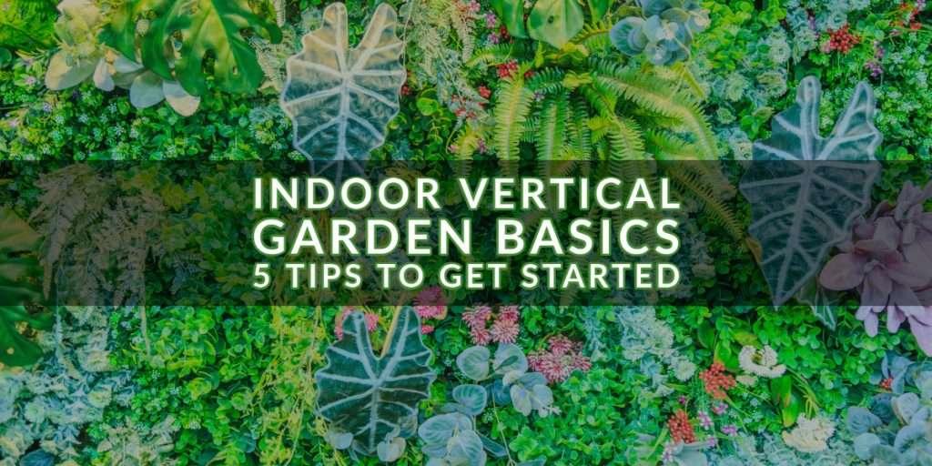 Indoor Vertical Garden Basics – 5 Tips to Get Started