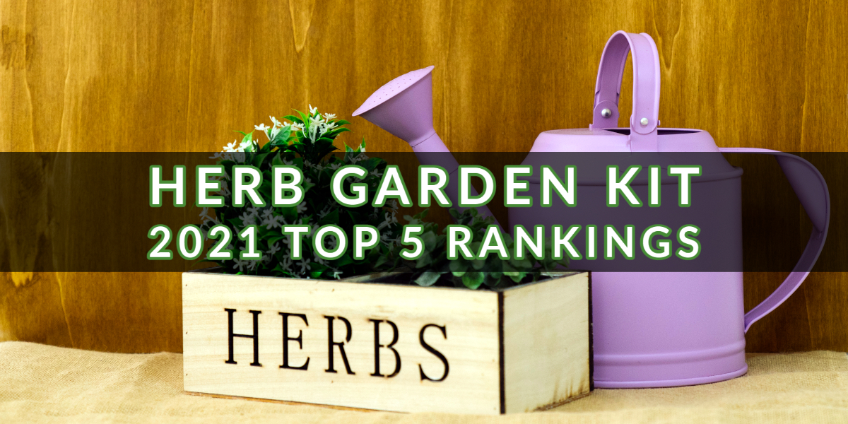 Herb Garden Kit 2021 Top 5 Rankings