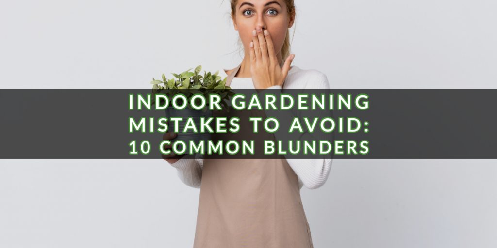 Indoor gardening mistakes are unavoidable – especially when you're starting out. Growing plants is a rewarding hobby. Plants provide so many benefits to the environment, yet many of them only require minimal attention to flourish. Indoor plants can stimulate calm and relaxation, beautify an area, and even provide food. Given their many benefits, the least we can do is care for our plants properly. Here are 10 common indoor gardening mistakes and tips to guide you in your journey to being the ultimate indoor gardener: Top 5 Indoor Gardening Mistakes Mistake 1: Not Knowing Your Plants One of the most common indoor gardening mistakes, and the one that causes the most plant casualties, is not knowing your own plants. Many gardening beginners treat all plants the same way, using the same soil for all plants and watering them at the same time. Keep in mind that there are hundreds of thousands of types of plants, and while they all have universal needs, such as water, light, and some attention, they like different things too, like specific temperatures and amounts of sunlight. The first advice in our list of indoor gardening tips is: Do your research. Before purchasing a plant, find out everything you can about it – ideal soil to use, longevity, watering preferences, etc. Do your research so you know how to best care for each individual plant. Mistake 2: Growing the Wrong Plants Indoor gardening tips sometimes forget to include this vital one – you should check the health of the seed or the plant you are buying. Some people might blame themselves for not having a green thumb, but they could have bought an unhealthy plant to start with. The best way for you to avoid getting the wrong plants is to purchase seeds or plants from reputable suppliers. Mistake 3: Using the Wrong Containers Plants have different-sized roots. Before planting or potting a plant, make sure you find out about its root growth. There are short-rooted plants and long-rooted plants. One of the common indoor gardening mistakes we see often is putting plants in the wrong containers, which can stunt their growth. Choose containers that are the right depth for your plants. If you put a long-root plant in a shallow container, it won't grow to its ideal height. Also consider the best material and amount of drainage for your plants. These factors are important in getting your plants the appropriate amount of water that they need. Fortunately, there is a great variety of good quality plant pots on the market from which to choose. Mistake 4: Overwatering or Underwatering Your Plants Overwatering and underwatering plants are two of the top indoor gardening mistakes new gardeners make that can kill plants. Some get overexcited, overwater plants, and drown them. Some get too scared to overwater plants, eventually underwater them, and leave them parched. Both these indoor gardening mistakes are harmful for plants and can potentially kill them. As a general rule, you only need to water most plants about once a week. To know if a plant is getting enough water, check the soil. Most plants don't need water until 1-2 inches of the soil is dry. You can check the soil daily until you get a feel for how much water each plant needs. Another option is to use a plant soil moisture meter. They are inexpensive and will give you more accurate information. Mistake 5: Choosing the Wrong Location for Your Plants When decorating a place, many people like putting a lot of plants in one area for aesthetic purposes. It's hard to blame them too; plants do look nice when they create a mini garden in your home! However, all plants need light to survive and will wilt away without it. When deciding where to put plants, consider the sunlight the area receives in a day more than the aesthetics. While some plants do well in low-light areas, a little sunlight each day is good for most any plant. It also wouldn't hurt to plan ahead. It takes plants some time to adapt to their environment, and constantly moving them around is harmful to them. 5 More Indoor Gardening Mistakes… Mistake 6: Not Pruning The most important aspect of pruning plants is taking out damaged branches, leaves, or flowers. A plant expels energy for all its parts, even the unhealthy ones. It is not ideal for a plant to keep giving off its energy for damaged parts, as it will stunt the growth of the whole plant. It may seem like pruning is hurting your plant, but if you do it right, it will help the plant grow. Do your research before pruning though; there are some plants that don't require pruning and are best left alone. Mistake 7: Not Using Fertilizer Think of fertilizer as plant vitamins. While plants get their basic needs from soil, water, air, and sunlight, many need additional nutrients from fertilizers. Except during winter when plants don't need it, quality, organic fertilizer should be applied anywhere between once a month to once every 3 months, depending on the type of plant. Read up on your plant's needs and apply fertilizer as needed to promote healthy plant growth. Mistake 8: Not Repotting Soil can only last so long, as plants and insects feed on its nutrients to grow. There comes a time when the soil cannot provide the nutrients the plants need anymore. This is where repotting comes in to avoid one of the common indoor gardening mistakes. Repotting plants allows them access to nutritious soil without much competition from insects. Except for when a plant is growing too big for its pot, repotting should be done with most plants about once every 12 months. Mistake 9: Not Cleaning Leaves Mud, dust, and grime particles are harmful to leaves — these particles clog plants' pores and make it hard for them to breathe. Dust also affects plants' photosynthesis and can hinder the growth of leaves and flowers. Dust your plants about once a month to avoid clogging their pores. Also, consider using a plant leaf cleaner if needed. 10. Indoor Gardening Mistakes: Last but not least… Too Many Plants While indoor gardening takes less time and effort than caring for a pet, they do have a few similarities. Both pets and plants are living things that need time and attention to survive. You should only take in as many plants as you can care for. If you don't have the time or space for a plant, don't take it in. Focus instead on the plants you already have and take care of them well. Indoor Gardening Mistakes to Avoid – The Wrap-up These indoor gardening mistakes and tips for avoiding them should help you grow your plants better. If you haven't started your gardening journey yet, it's best to start with a few plants or even just one. Once you get a feel for what plants need, you'll be able to grow your own garden in no time.