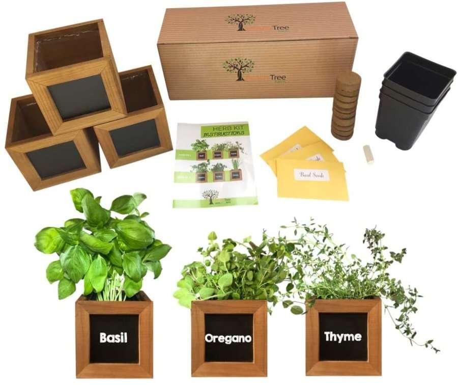 Peach Tree Farm Herb Garden Kit