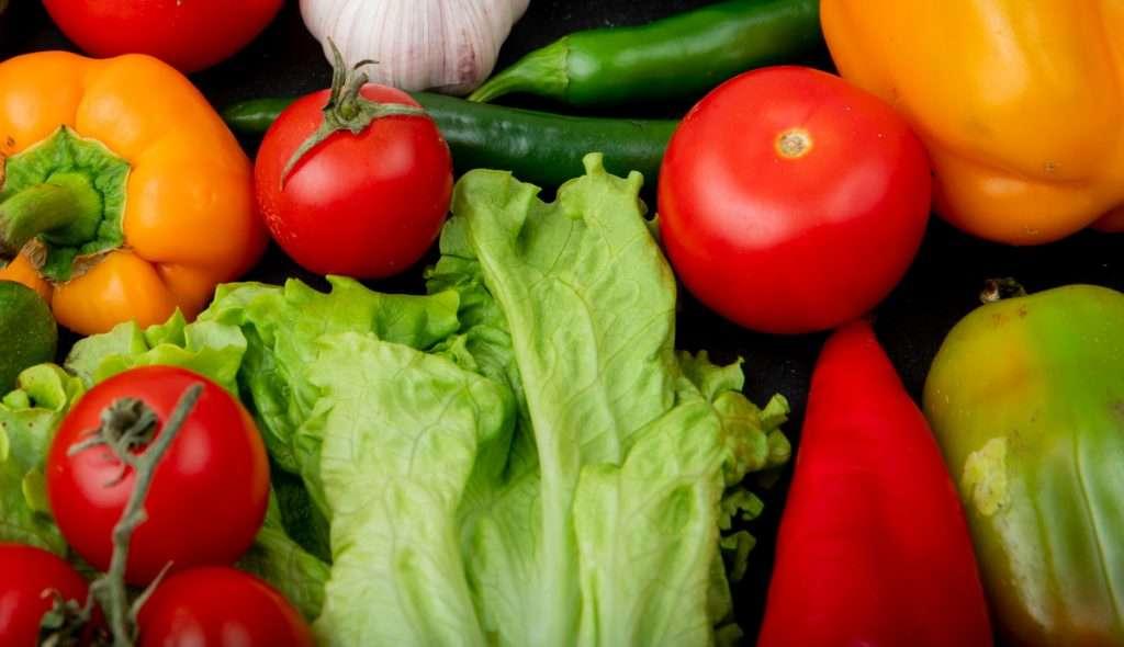 Vegetable Gardening Indoors