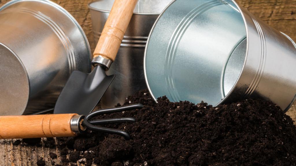 The Best Potting Mix for Your Indoor Herb Garden