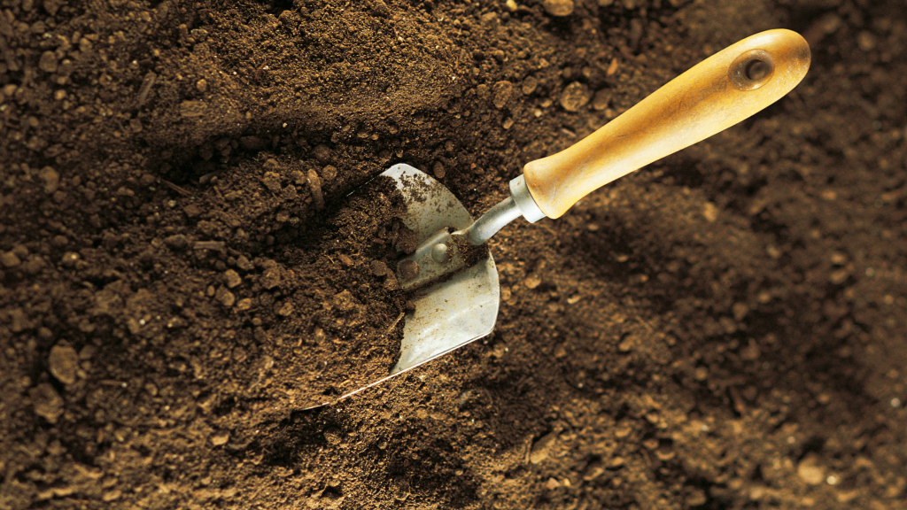 9. Using the wrong potting soil