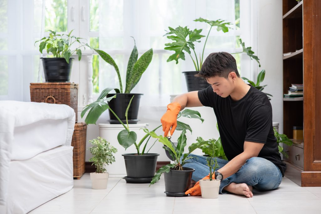 Men wearing orange gloves and planting trees indoors.