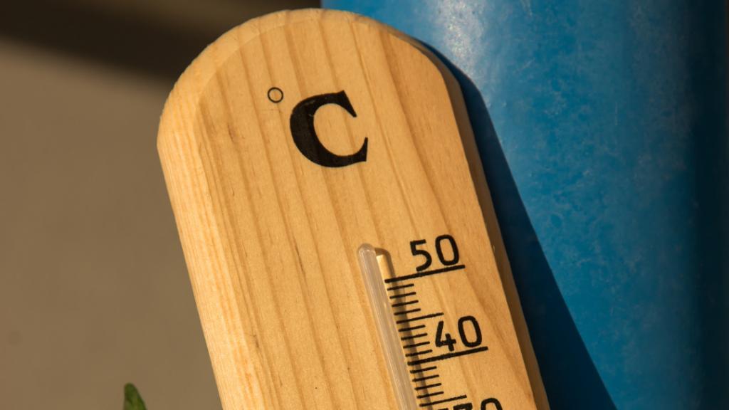 Plant Temperature