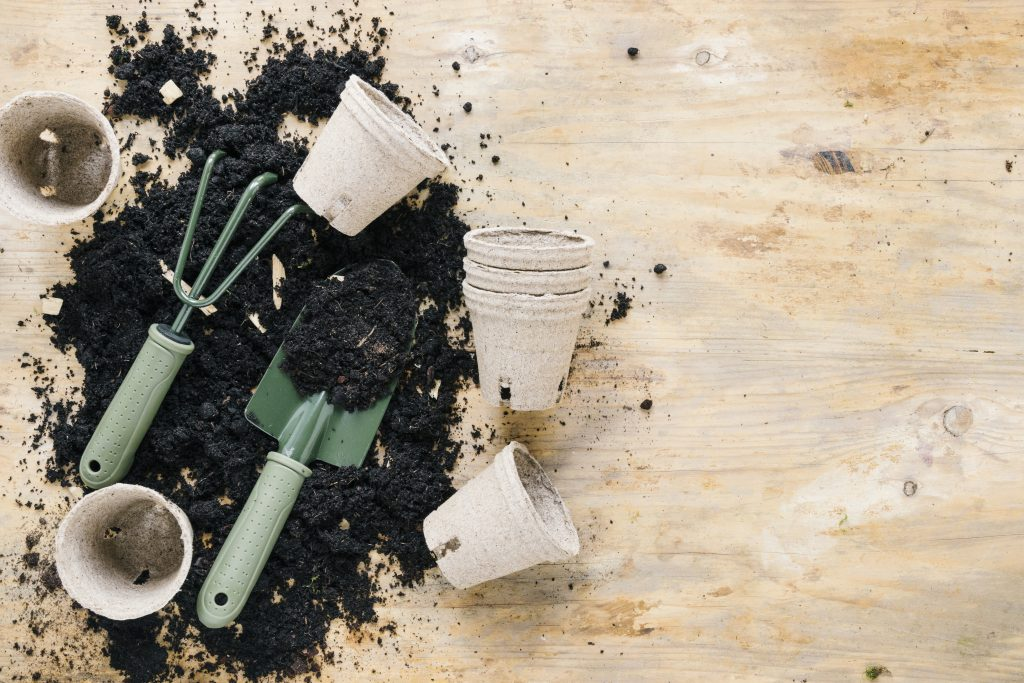 Pots and Containers for Eco-Friendly Indoor Gardening